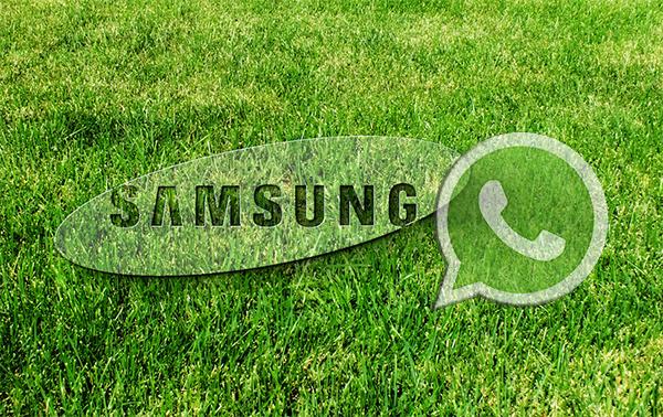 скачать whatsapp для samsung