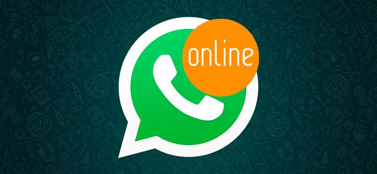 Что такое WhatsApp Online и как им пользоваться