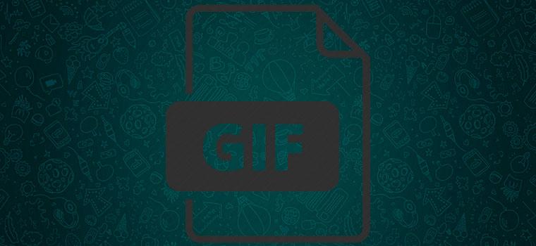 WhatsApp добавил в обновление 2.17.6 GIF-Анимации
